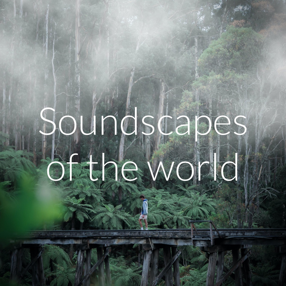 Soundscapes of the world
