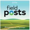 Field Posts artwork