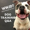Dog Training Q&A What Would Jeff Do? artwork