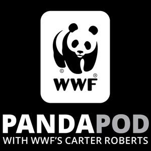 The Panda Pod