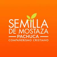 Semilla de Mostaza Pachuca podcast