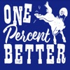 One Percent Better: A show about the Indianapolis Colts artwork