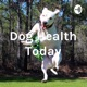 Dog Health Today