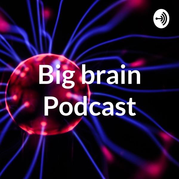 The Big brain Podcast