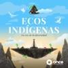 Ecos Indígenas: La Voz de la Diversidad