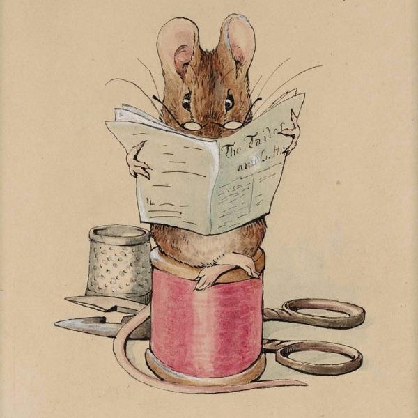 Ratón de librería