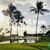 SGC LIVE from WFH Studios - Weekly Update artwork