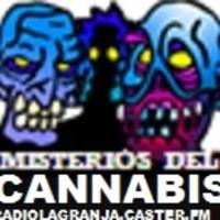 MISTERIOS del CANNABIS MARIHUANA RadioLaGanja podcast