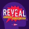 Reveal: The Revenue Intelligence Podcast artwork