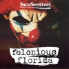 Felonious Florida artwork