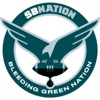 Bleeding Green Nation: for Philadelphia Eagles fans artwork