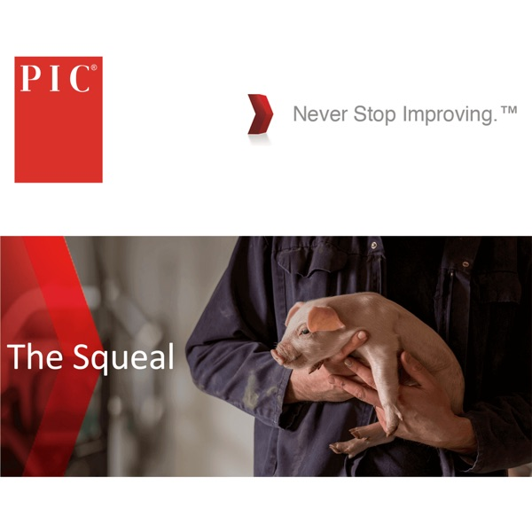 The Squeal, by PIC.com