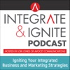 Integrate & Ignite | Marketing Insights to Inspire artwork