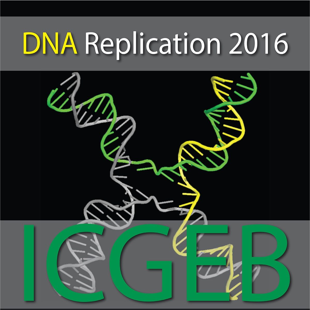 At the Intersection of DNA Replication and Genome Maintenance: from Mechanisms to Therapy