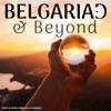 Belgariad & Beyond artwork
