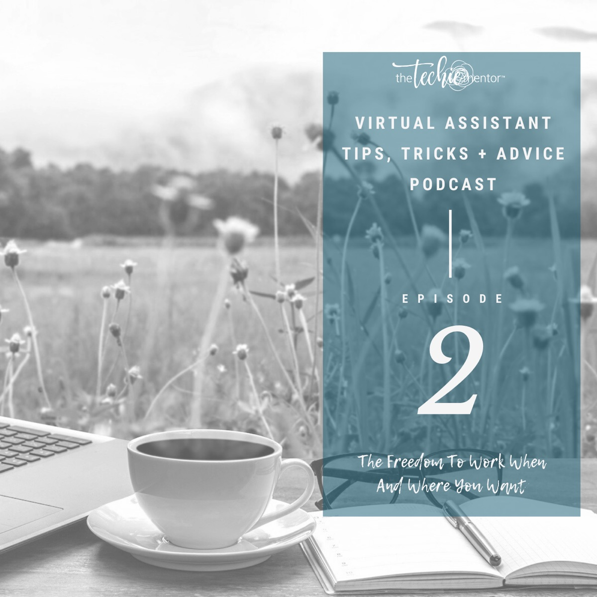 The Virtual Assistant Tips, Tricks + Advice Podcast