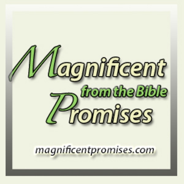 Magnificent Promises