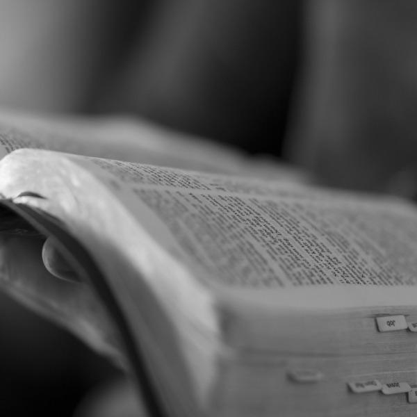 Grace Fallbrook (PCA) Sermons