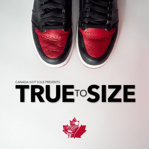 Cover image of True to Size