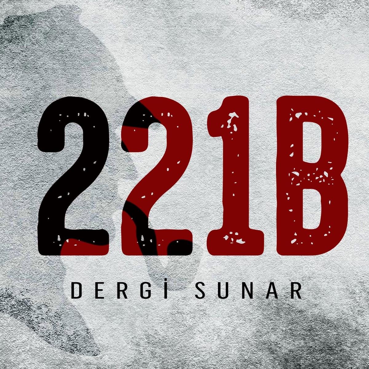 221B Dergi Sunar