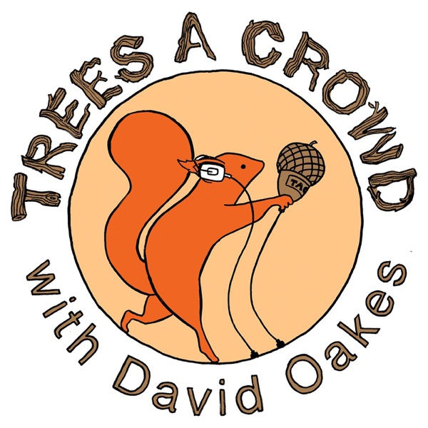Trees A Crowd – Podcast – Podtail