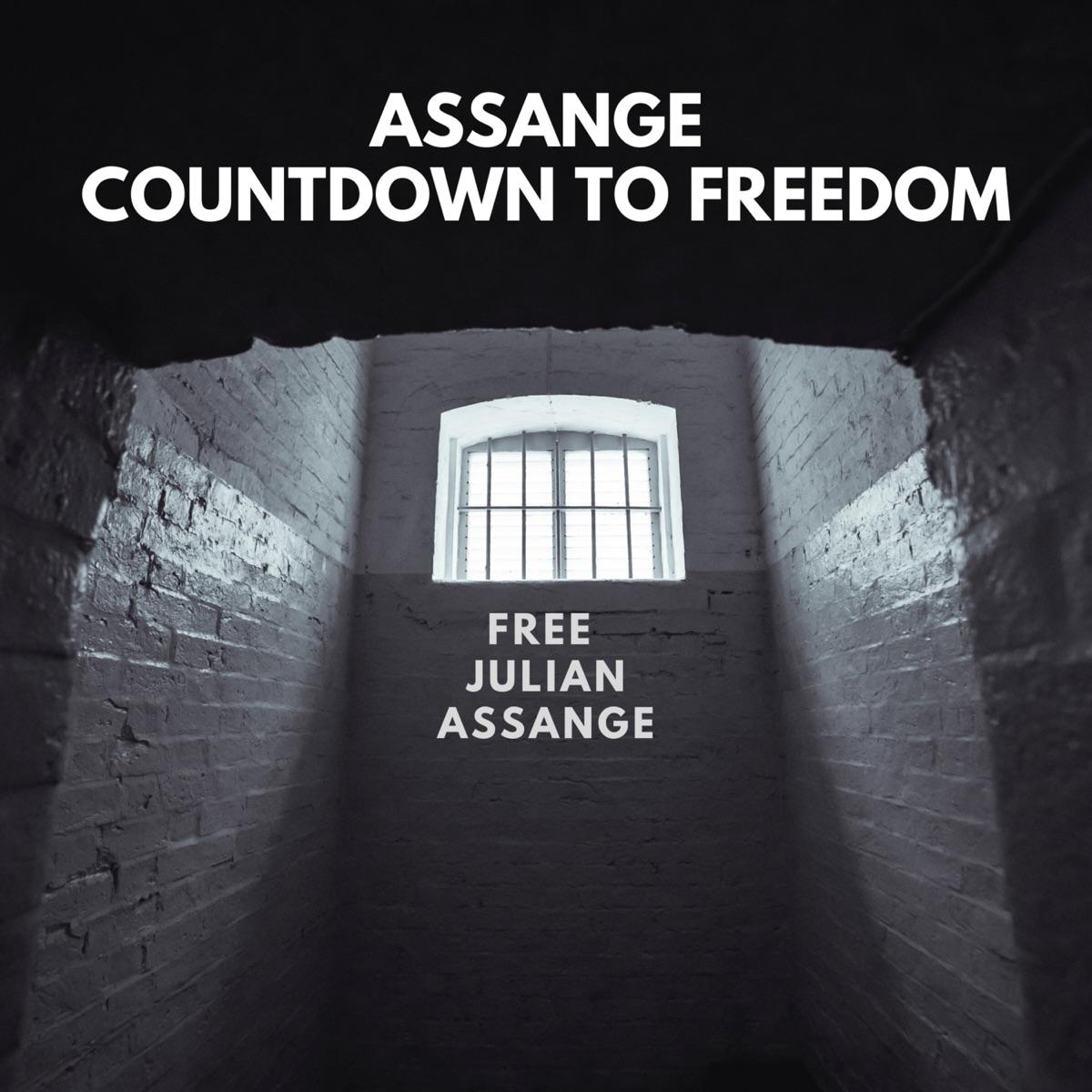Episode 20: Assange Activist Armada