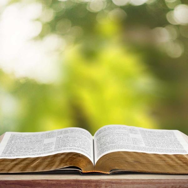 1 John: The Fruit of Fellowship with Christ