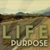 Life on Purpose artwork