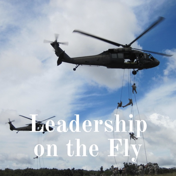 Leadership on the Fly