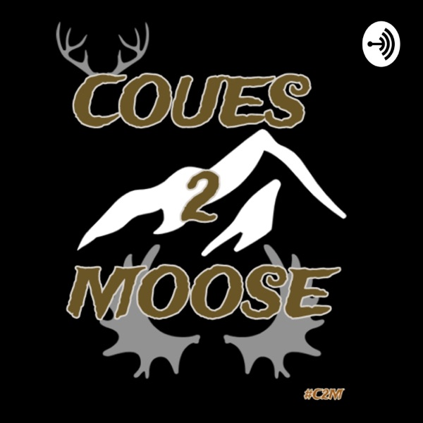 Coues 2 Moose
