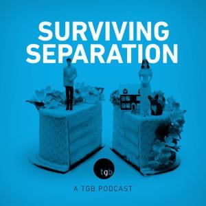 Surviving Separation - Family, Divorce & the Kids