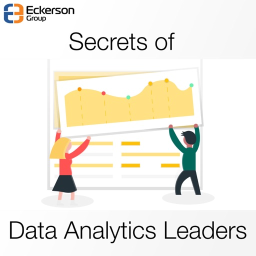 Cover image of Secrets of Data Analytics Leaders