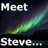 Meet Steve artwork