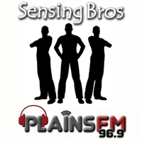 Sensing Bros podcast