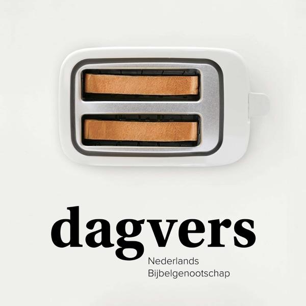 Dagvers