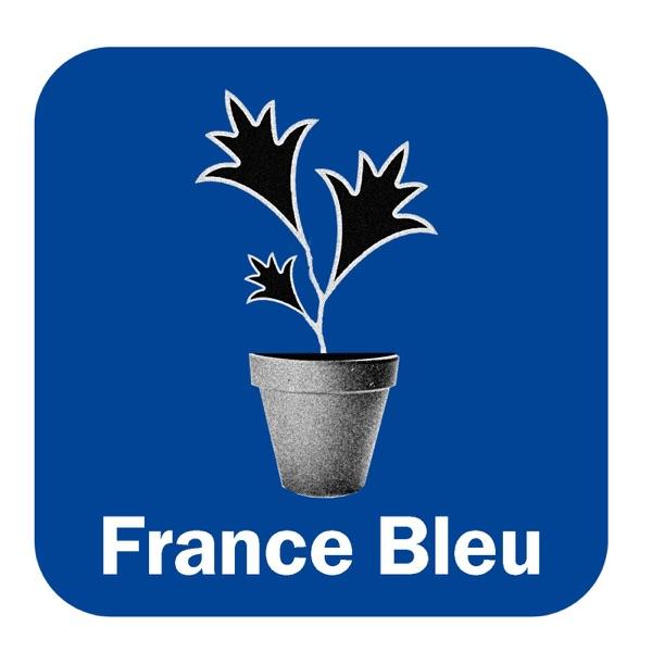 Les Experts Au Jardin FB Normandie (Rouen)
