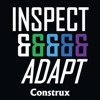 Inspect and Adapt artwork