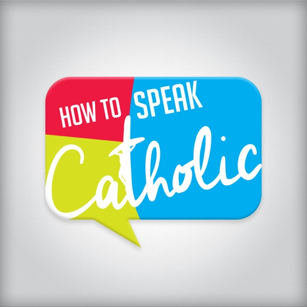 How to Speak Catholic   The Joy of the Gospel   The Joy of Being Catholic   Why Do Catholics Do What They Do?