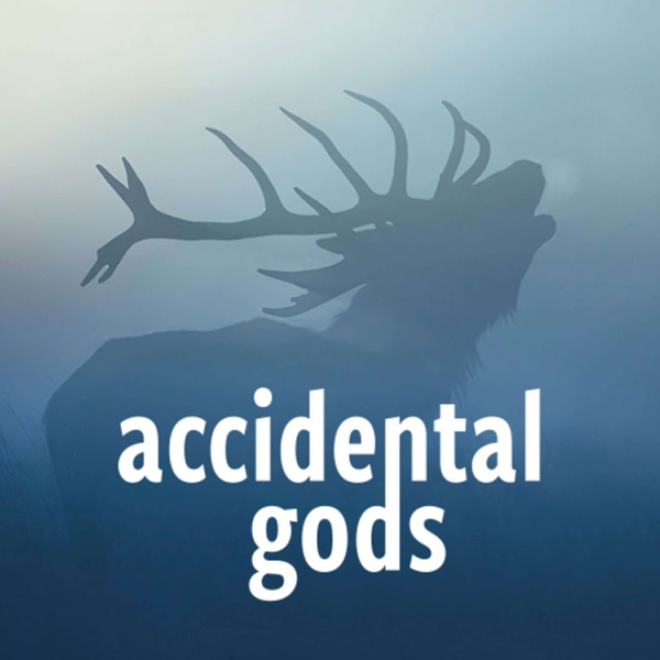 Accidental Gods
