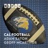 Bleav in Cal Football artwork