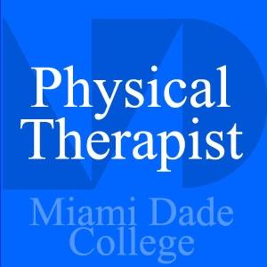 Physical Therapist - Ken Lee - Gait Patterns