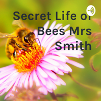 Secret Life of Bees Mrs Smith podcast