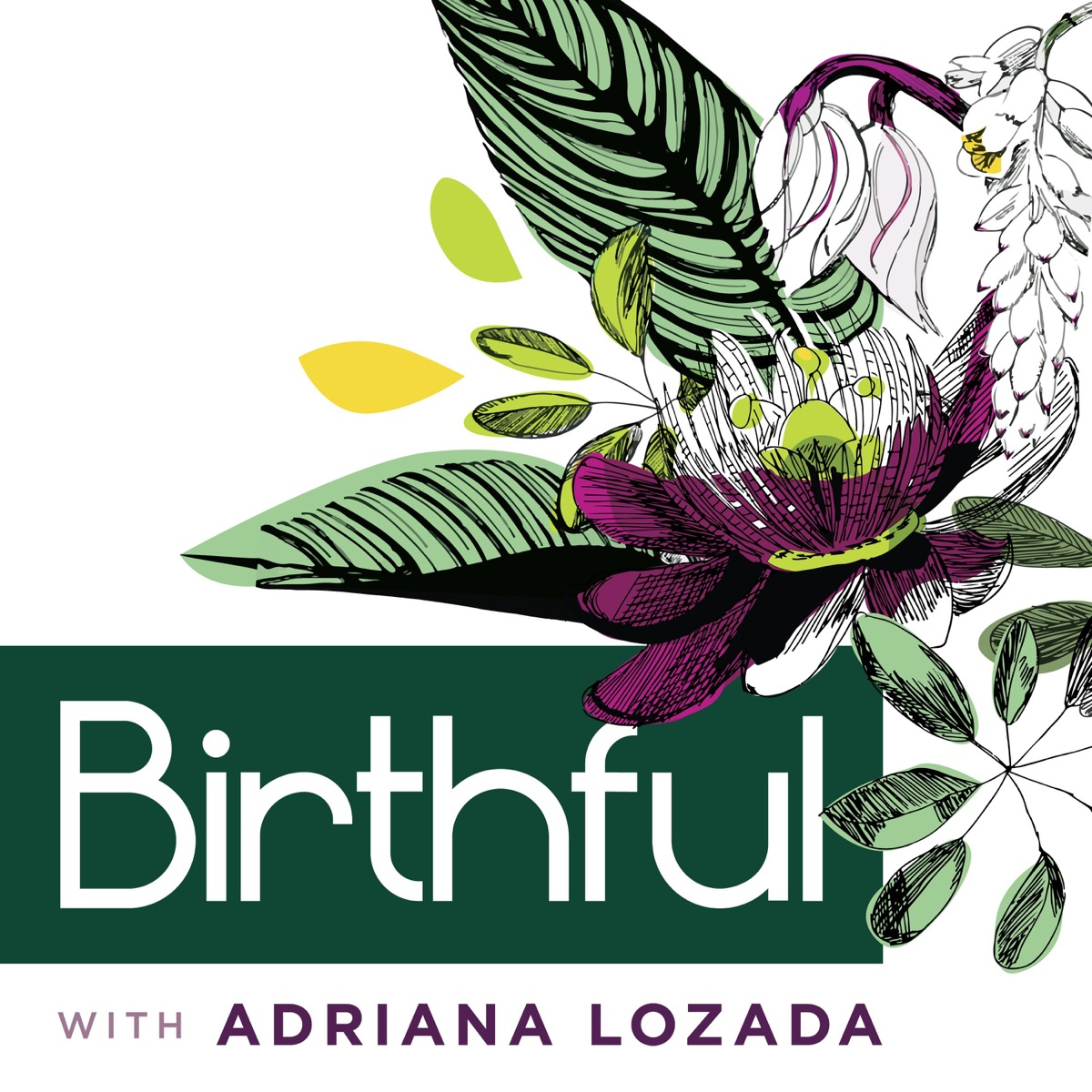 Birthful Is Back! And Better Than Ever!
