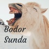 Bodor Sunda