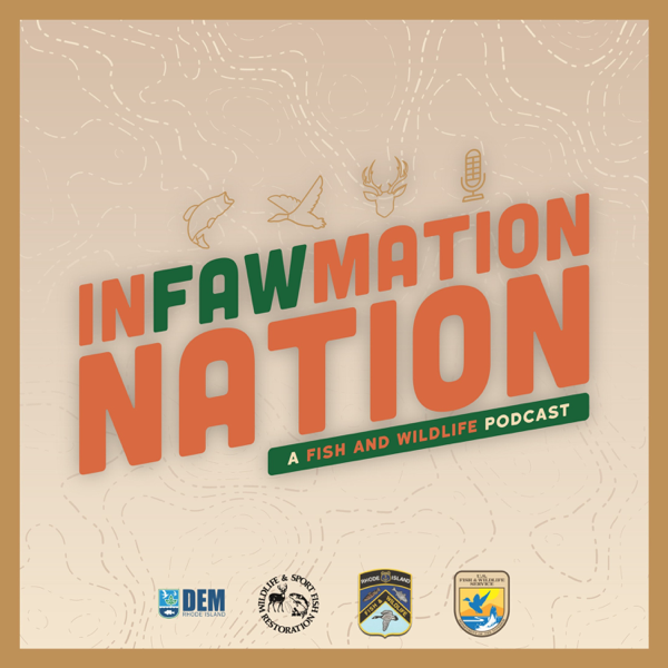 InFAWmation Nation