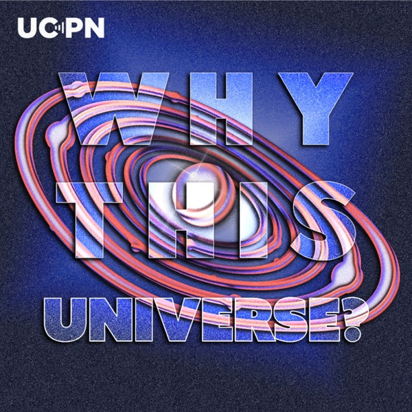 Why This Universe? Artwork