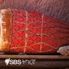 SBS Tigrinya - ኤስ.ቢ.ኤስ ትግርኛ
