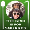 The Grid Is For Squares artwork