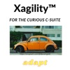 Sustainable Xagility™ - board & executive c-suite agility for the organization's direction of travel artwork