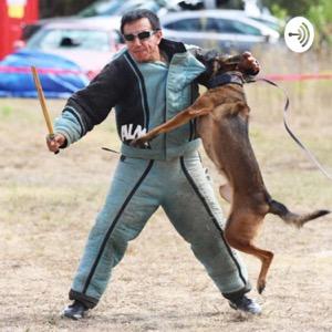 Dog Training Is My Passion